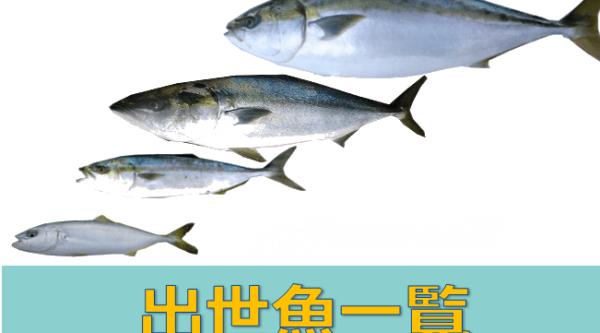 フロントエンドエンジニアは出世魚?「ぶり」になれる3つの資質